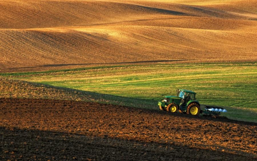 Jak nakoupit zemědělské pozemky