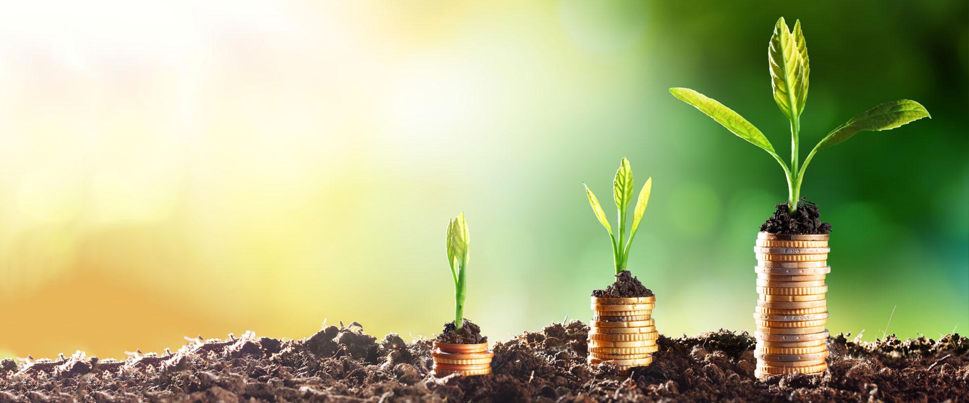 Tipy, kam investovat peníze na zhodnocení v současné době